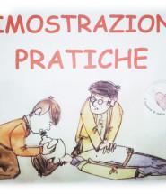 VIVA-dimostrazioni-pratiche-2
